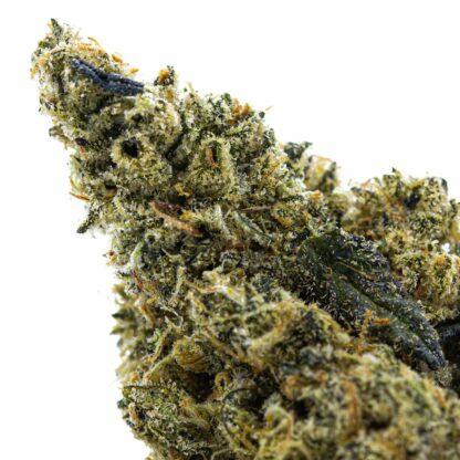 Official Crunch Berry Cannabis Strain from Craft Cannabis Producer in BC- Skookum Cannabis