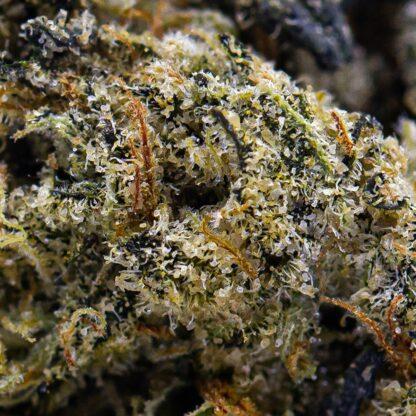 Crunch Berry Canned Cannabis from Skookum Organic Cannabis