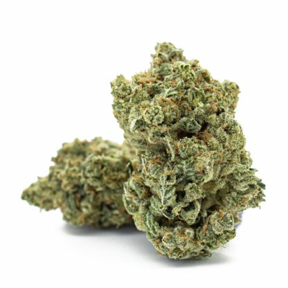Organically grown BC Cannabis-Green Grease available from Skookum Living Soil Collective