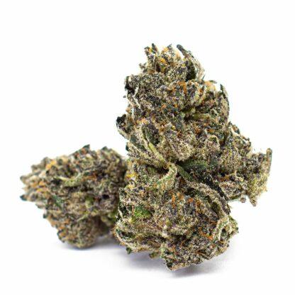 Sherbert BC Bud from Organic Online Weed in Cannabis-Skookum Cannabis